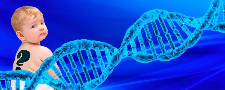 Ходатайство о назначении генетической экспертизы на отцовство