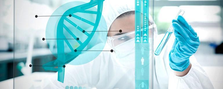ДНК-тест на установление отцовства