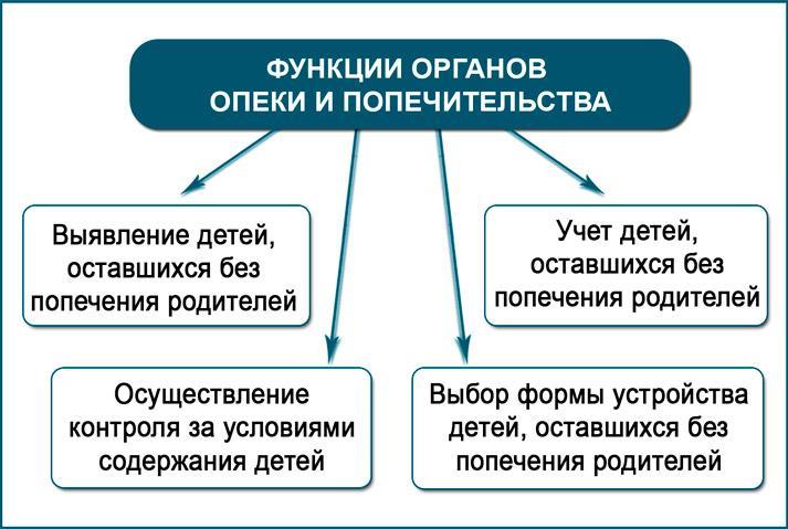 Основные задачи органов опеки и попечительства