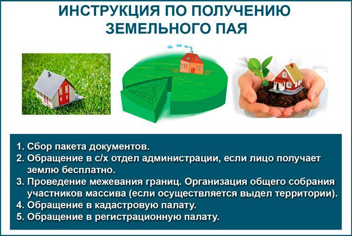 Инструкция: как получить земельный пай