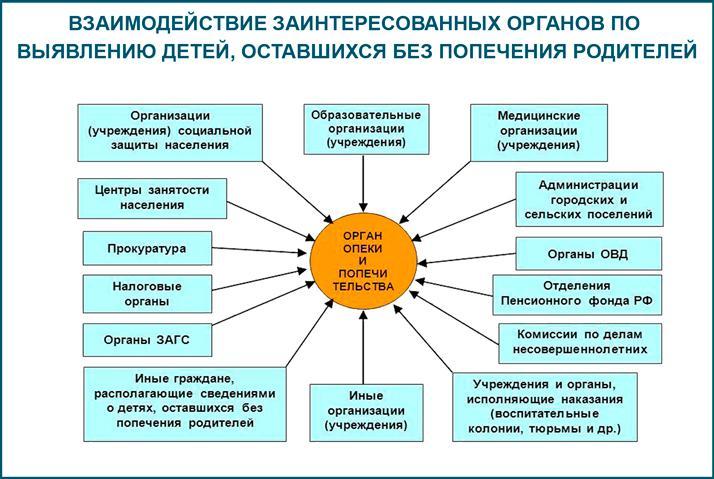 Органы опеки и попечительства в Российской Федерации