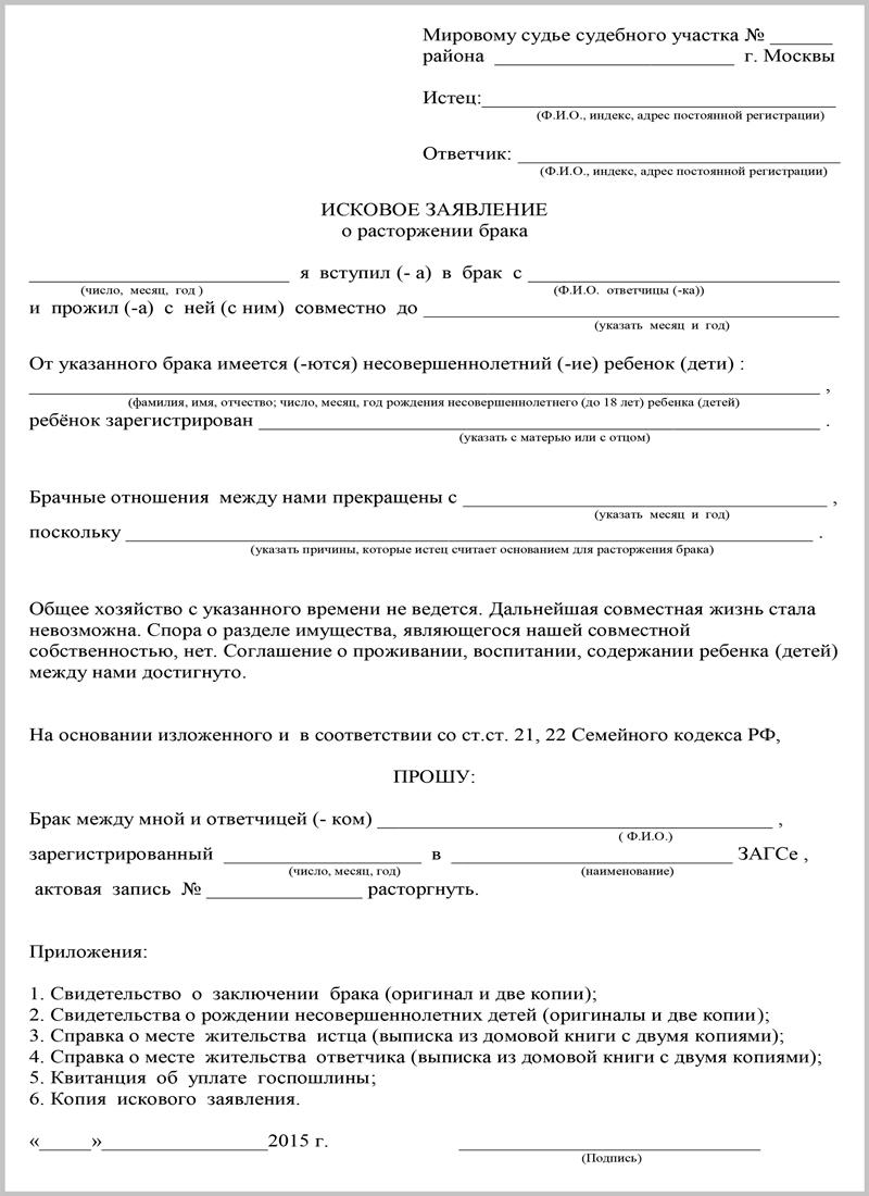 Образец заявления на развод через суд с детьми
